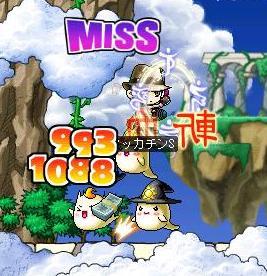 Maple0238a.jpg