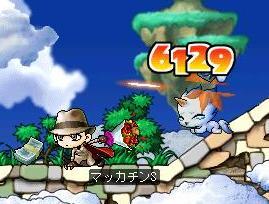 Maple0253a.jpg