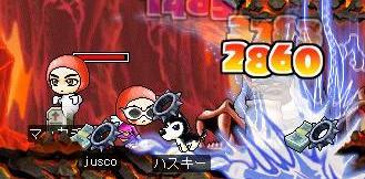 Maple0262a.jpg