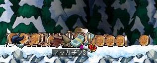 Maple0273a.jpg
