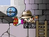 Maple0313a.jpg
