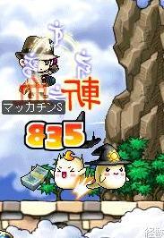 Maple0322a.jpg