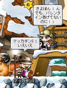 Maple0343a.jpg
