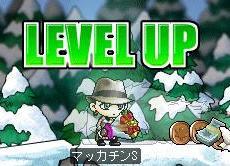 Maple0348a.jpg