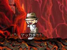 Maple0407a.jpg