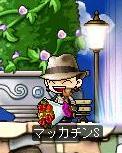 Maple0484a.jpg
