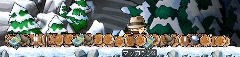 Maple0518a.jpg