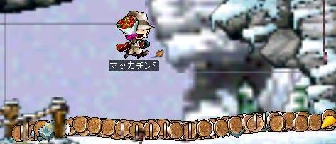 Maple0541a.jpg