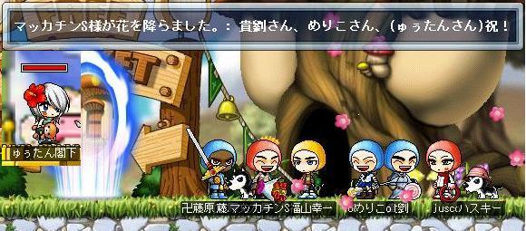 Maple0545a.jpg