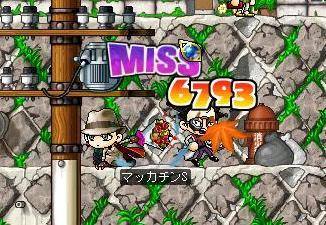 Maple0564a.jpg