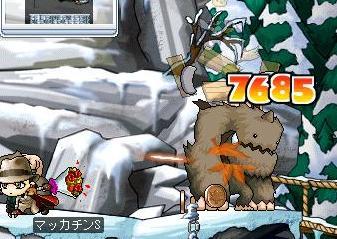 Maple0566a.jpg