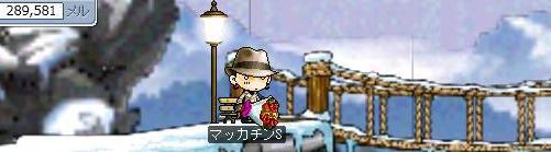 Maple0580a.jpg