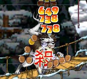 Maple0585a.jpg