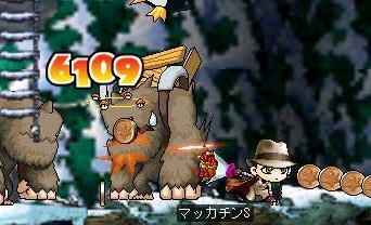 Maple0612a.jpg