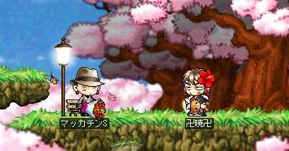 Maple0634a.jpg