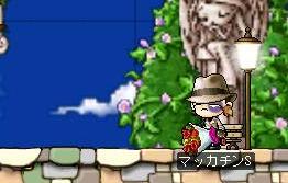 Maple0651a.jpg