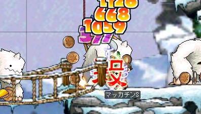 Maple0662a.jpg