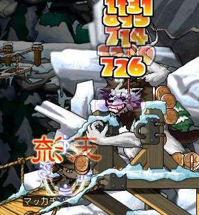 Maple0676a.jpg