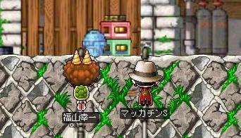 Maple1008a.jpg