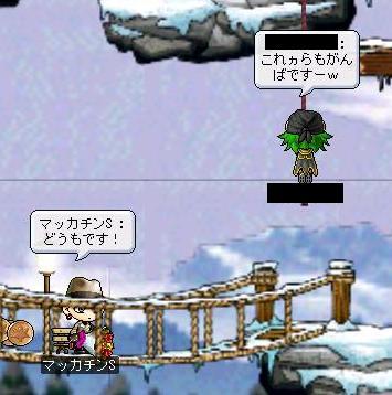 Maple1048a.jpg
