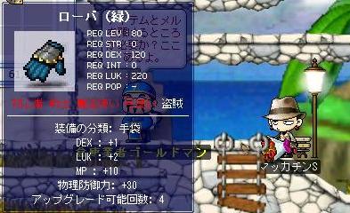 Maple1062a.jpg