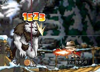 Maple1068a.jpg