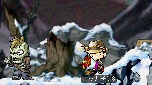 Maple1076a.jpg