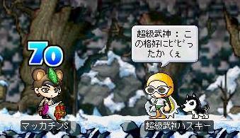 Maple1092a.jpg