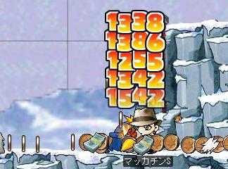 Maple1106a.jpg
