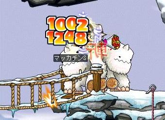 Maple1109a.jpg