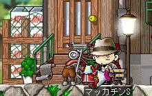 Maple1136ab.jpg