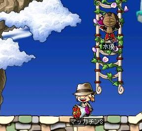 Maple1161a.jpg