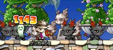 Maple1162a.jpg