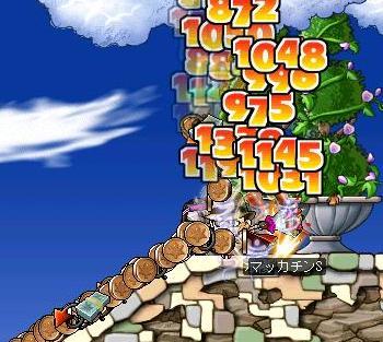 Maple1164a.jpg