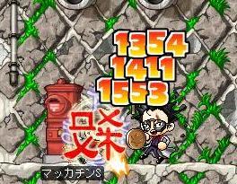 Maple1170a.jpg