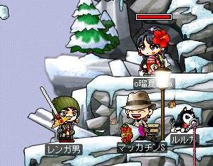 Maple1196a.jpg