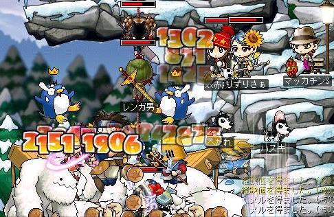 Maple1250a.jpg