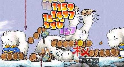Maple1292a.jpg
