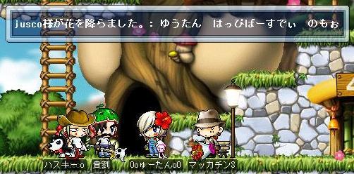 Maple1302a.jpg