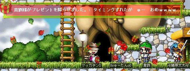 Maple1303a.jpg