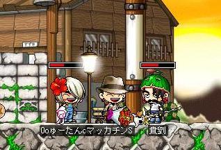 Maple1305a.jpg