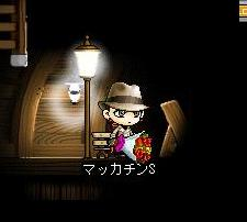 Maple1331a.jpg