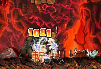 Maple1379a.jpg