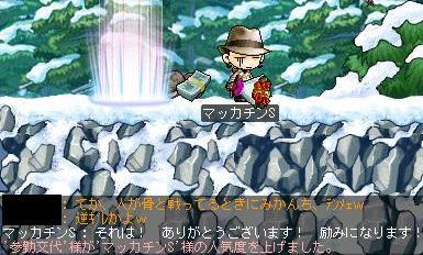 Maple1392a.jpg