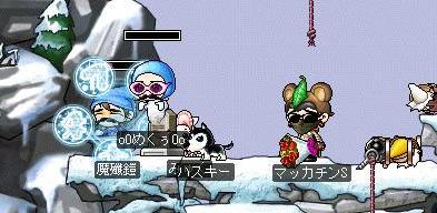 Maple1405a.jpg