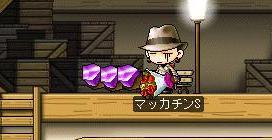 Maple1432a.jpg