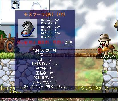 Maple1442aaa.jpg