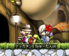 Maple1471a.jpg