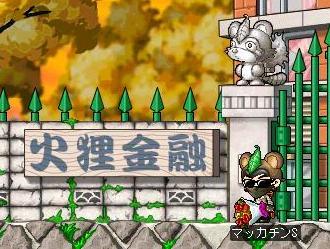 Maple1632a.jpg