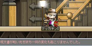 Maple1643a.jpg